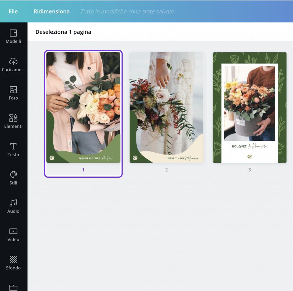 Panoramica delle pagine del progetto